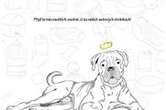 2013 Sykorova_plakat-page-001
